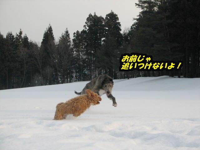 09.1.26べべ&康介3