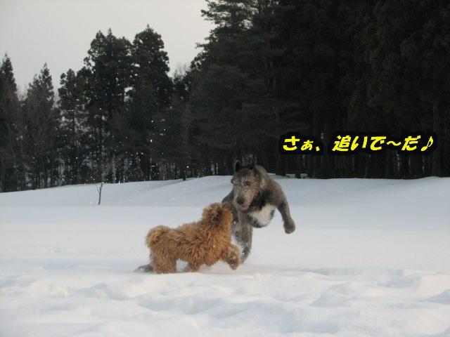 09.1.26べべ&康介4