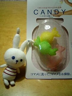 ぴょんこ&キャンディ