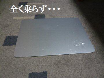 P1270037.jpg