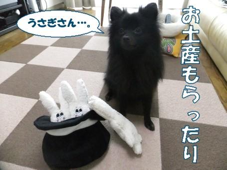 20110719_2.jpg