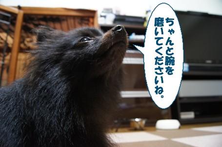 20110724_5.jpg