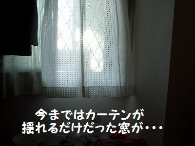 ねこ712-2 066
