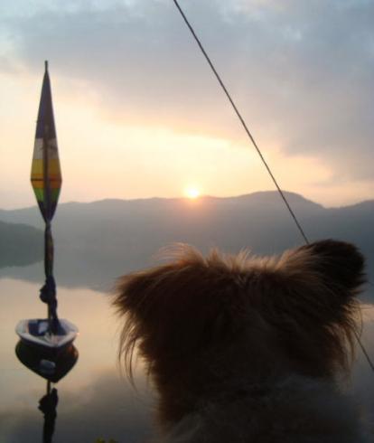 日の出を見るリプリー
