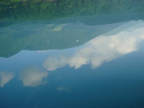 水に映る景色