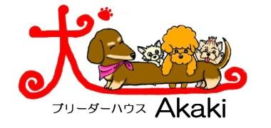 akaki-rogo-10.jpg