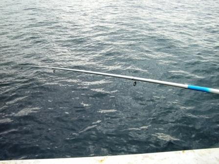 201012釣り