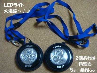 DSC03541 - コピー