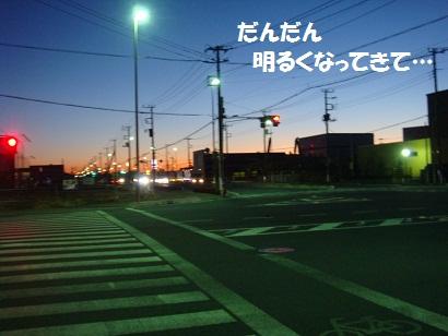 DSC00295_20110206223445.jpg