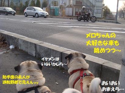 DSC02248_20110206230401.jpg