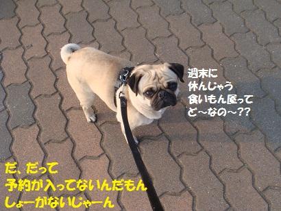 DSC02250_20110206230401.jpg