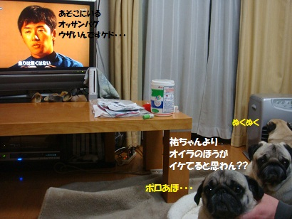 DSC03241_20110228232334.jpg