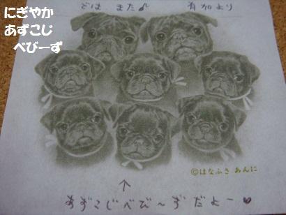 DSC03554_20110326154715.jpg