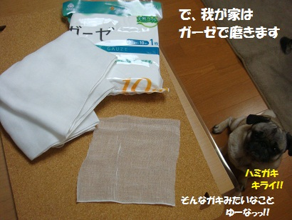 DSC03592_20110327161113.jpg