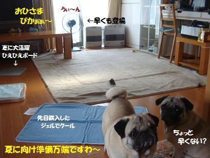 DSC04801_20110417163259.jpg