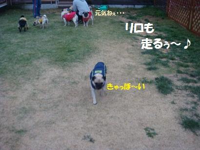 DSC07762.jpg