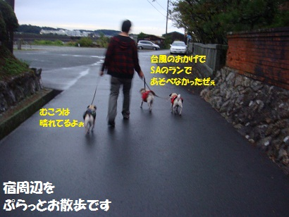 DSC07873.jpg