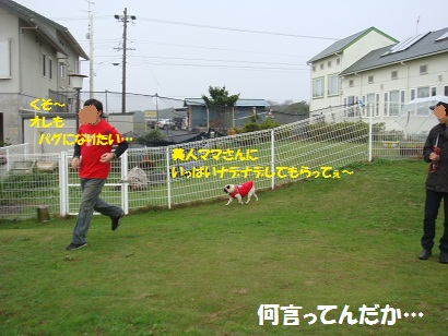 DSC07978.jpg
