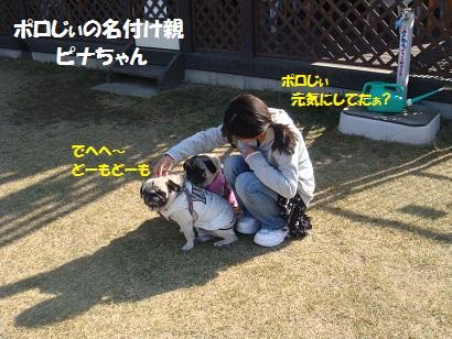 DSC08796_20110413021522.jpg