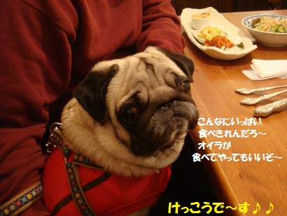 DSC09174_20110419211007.jpg