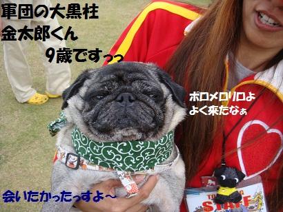 PMBS4155_20110322180524.jpg