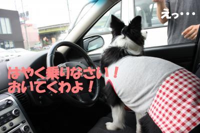 ドライブ2_20090725