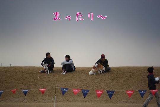 2011012913.jpg