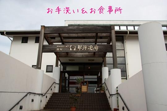 2011012915.jpg