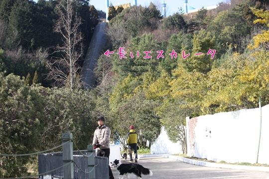 20110129318.jpg