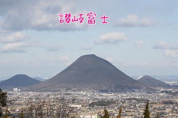 20110129328.jpg