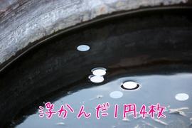 20110129330.jpg