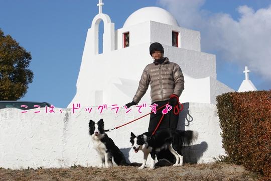 2011012934.jpg