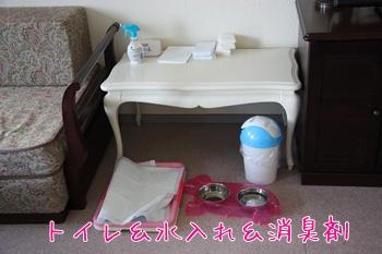 2011012938.jpg