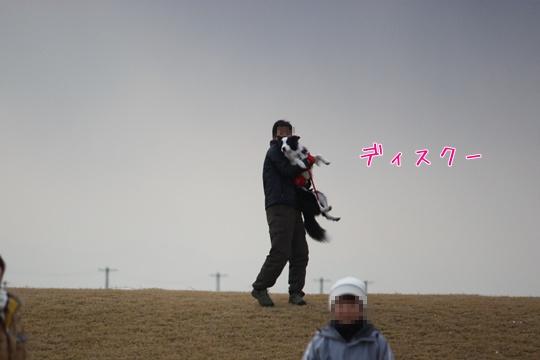 201101296.jpg