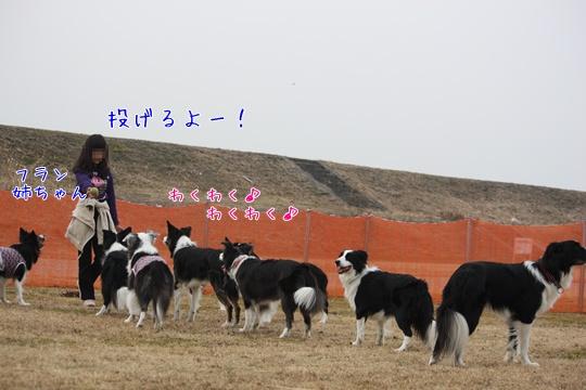 2011020627.jpg
