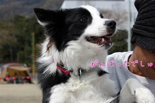201103267i1.jpg