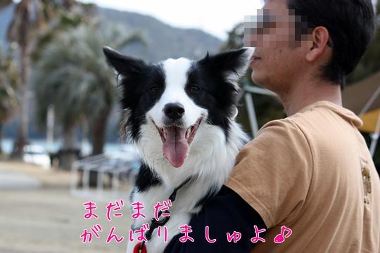 201103267i4.jpg