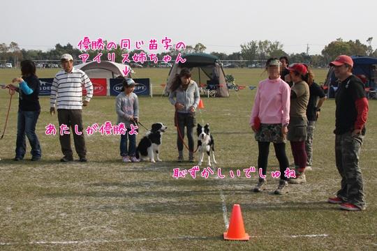 2011041163.jpg