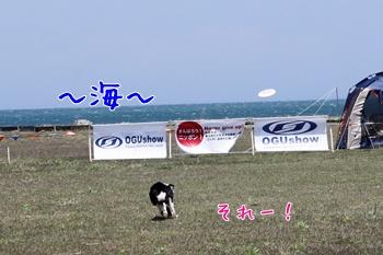 2011042912.jpg