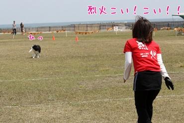 201105043.jpg