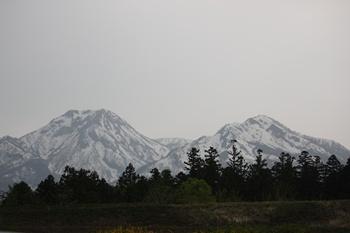 201105128.jpg