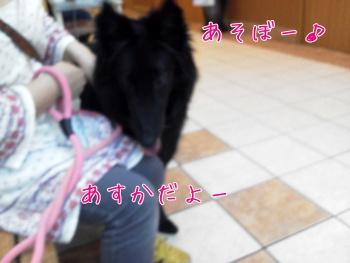 201106159.jpg