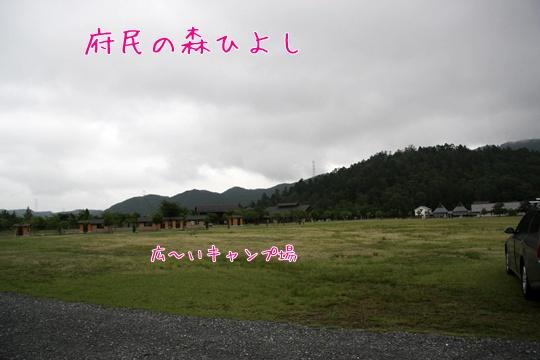 2011061837.jpg