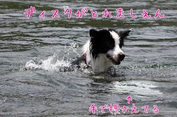 201107211.jpg