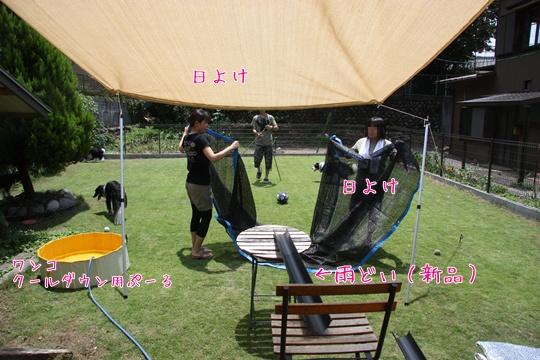 201107222.jpg