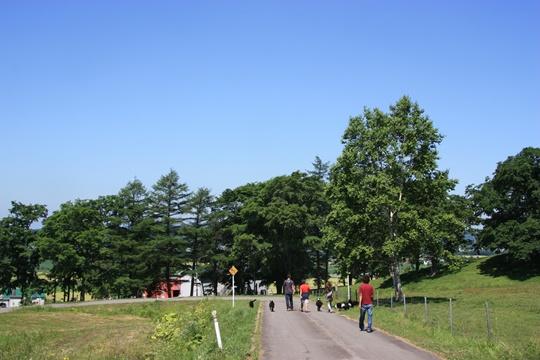 2011HokkaidoB63.jpg