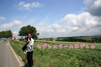 2011HokkaidoBf10.jpg