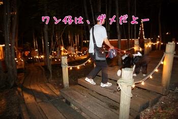 2011HokkaidoM10.jpg