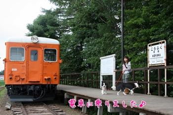 2011HokkaidoO15.jpg