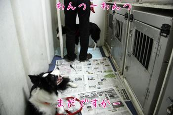 2011HokkaidoS12.jpg